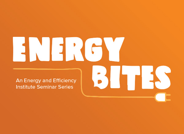 Energy Bites - April 16, 2021